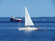 30th Jul 2021 - Sailing