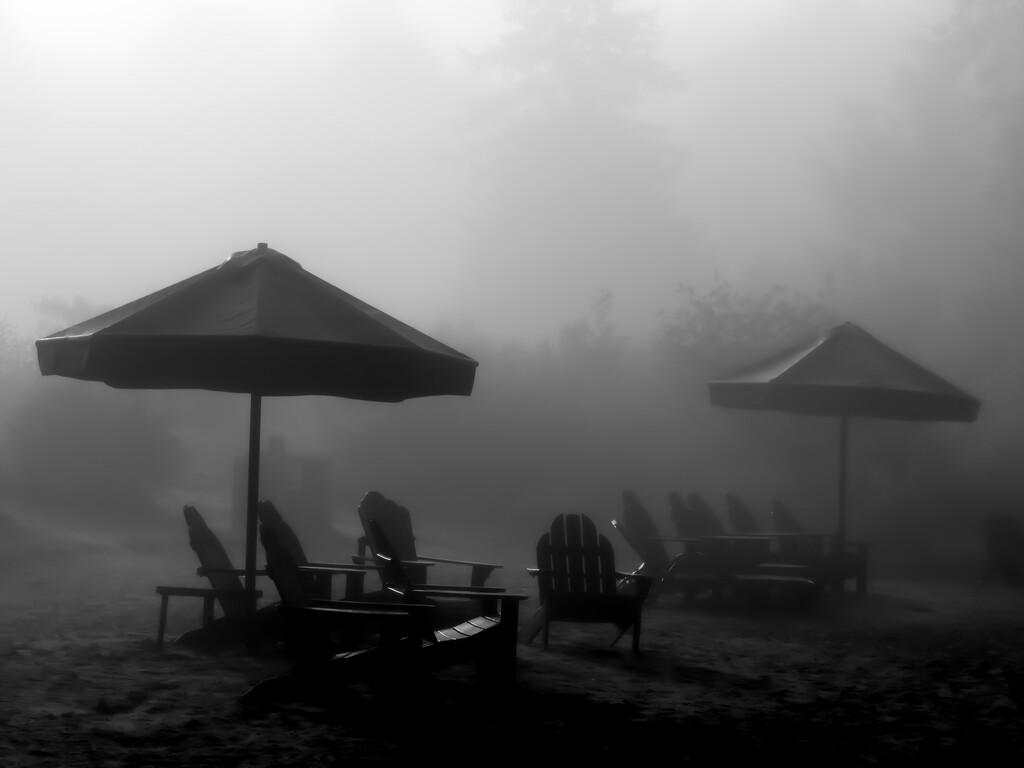 mist on the beach by northy