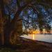 Lakside Sunrise ... by pdulis