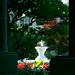 morning sun on the fountain