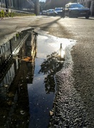 27th Jul 2021 - Evening puddle