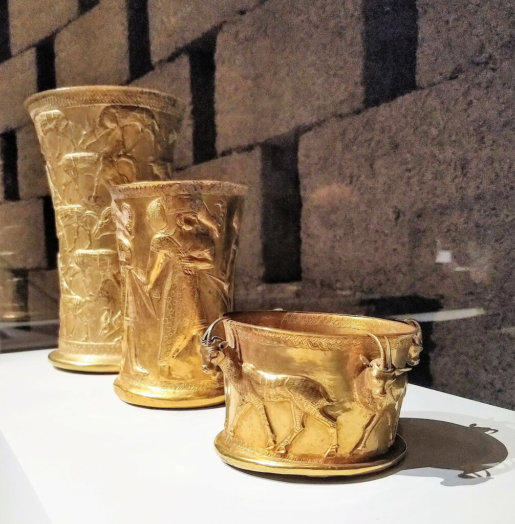 Gold gazelles by boxplayer