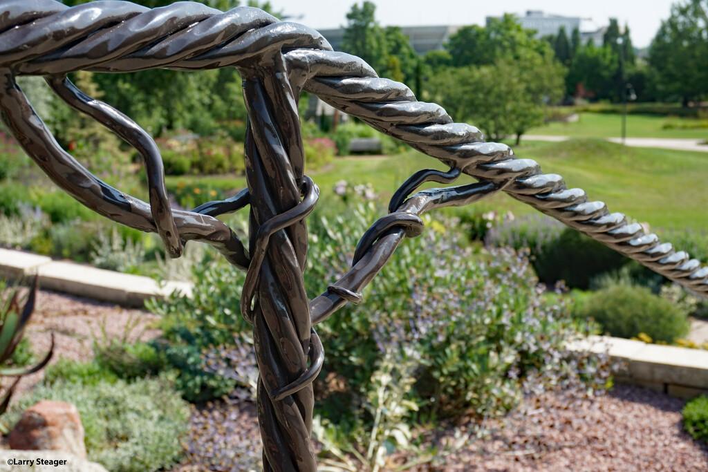 Grapevine railing jpg by larrysphotos