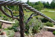 30th Jul 2021 - Grapevine railing jpg