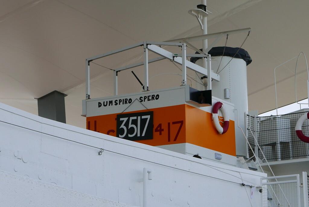 'Dum Spiro Spero' by quietpurplehaze