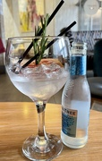 31st Jul 2021 - Waiter, waiter, there's a tree in my gin!