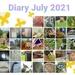 July 2021 diary