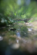 1st Aug 2021 - Downstream