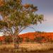 Alice Springs II