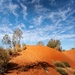 Red dunes of the Finke Race