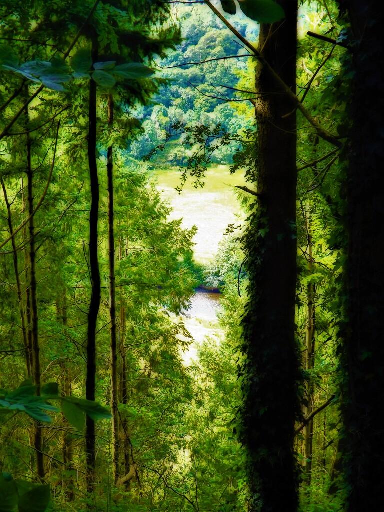 Through the glen view by ajisaac