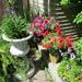 Retaining wall garden