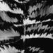 imogen leaves by kali66
