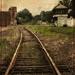 Vintage Railroad Tracks by olivetreeann