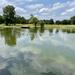 Reflecting pond by samae