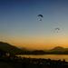 2021-08-10 hanging around at sunset by mona65