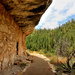 Walnut Canyon by ryan161