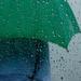 Rain by caterina