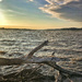 Mississippi River Sunset by lsquared