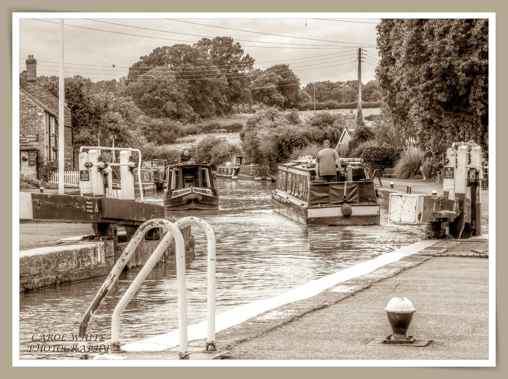 Busy Time On The Canal by carolmw