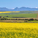 The  Overberg  by ludwigsdiana