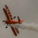 Wing-walker by mave