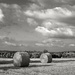 Straw Bales by vignouse