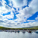 Cunningsburgh Marina by lifeat60degrees
