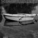 stanley's boat