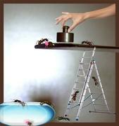 4th Sep 2021 - Teaching the pet ants not to climb.......