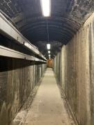 3rd Sep 2021 - Secret tunnel