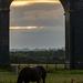 Sun Spotting  by rjb71