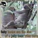 that's tiny! by koalagardens