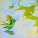 flying to the tree - a painterly take