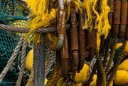 6th Sep 2021 - The secret life of a fishing trawler