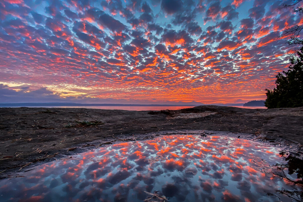 Cotton Candy Sunset by kwind