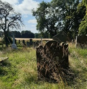 1st Sep 2021 - old graveyard at Leith Hall