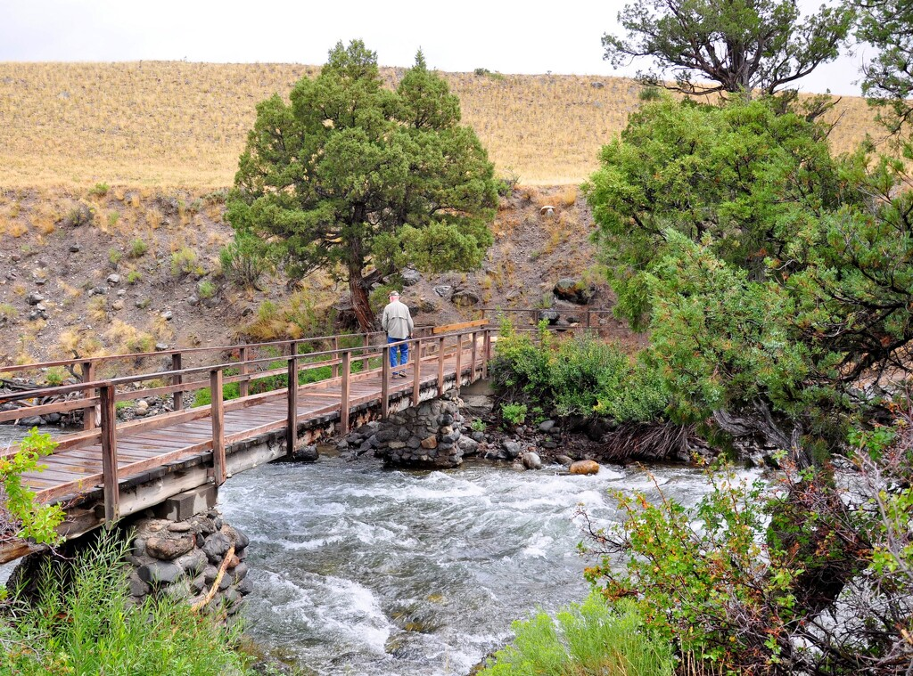 Fishing in Yellowstone National Park, Wyoming by stownsend