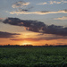 West Neck Sunset by timerskine