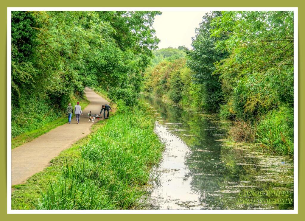 Canal Scene,Sixfields by carolmw