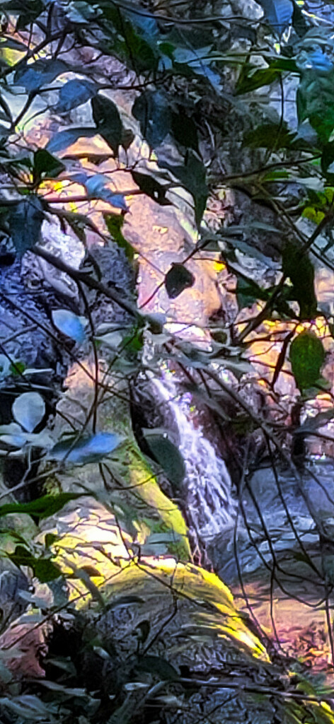 Tiny waterfall in creek by jeneurell