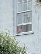12th Sep 2021 - Window Support