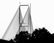 12th Sep 2021 - Audubon Bridge