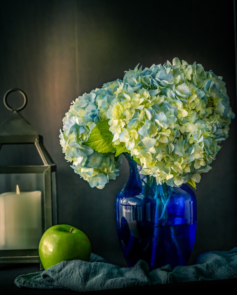 birthday flowers by jernst1779