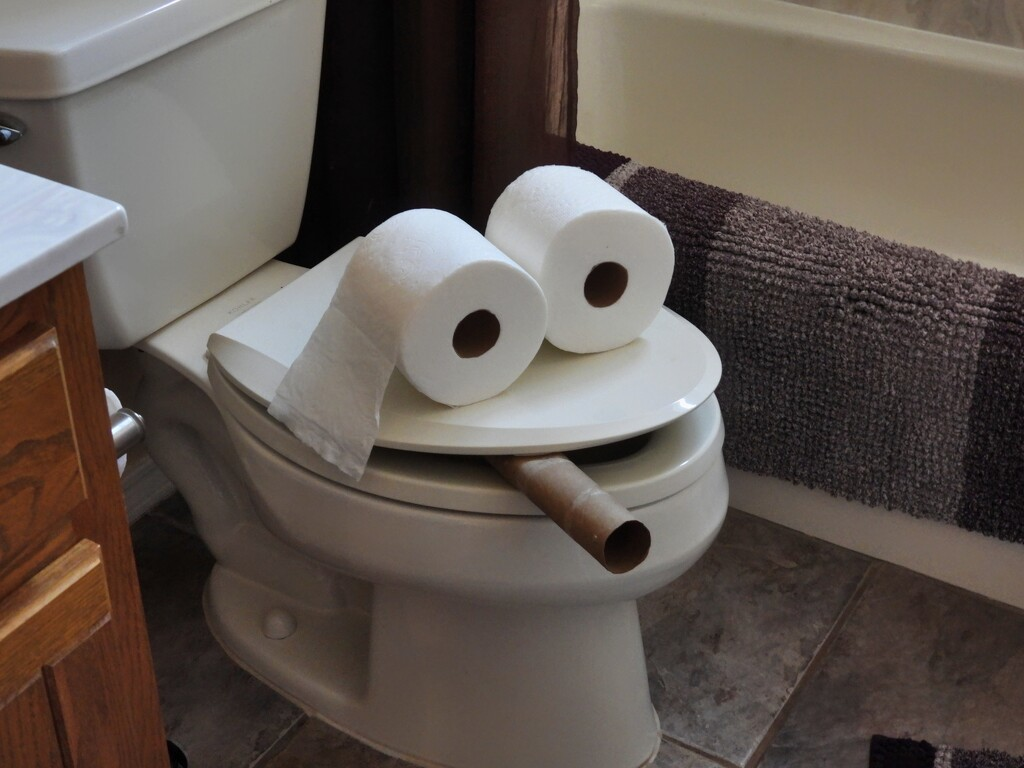 """""""Come Quick! The Toilet is Smoking!"""" by janeandcharlie"""
