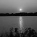 Silver Lake Sunset (B&W) - NF-SOOC