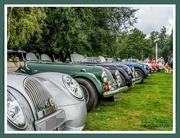 13th Sep 2021 - Classic Morgan Line Up,Delapre Abbey Classic Car Show