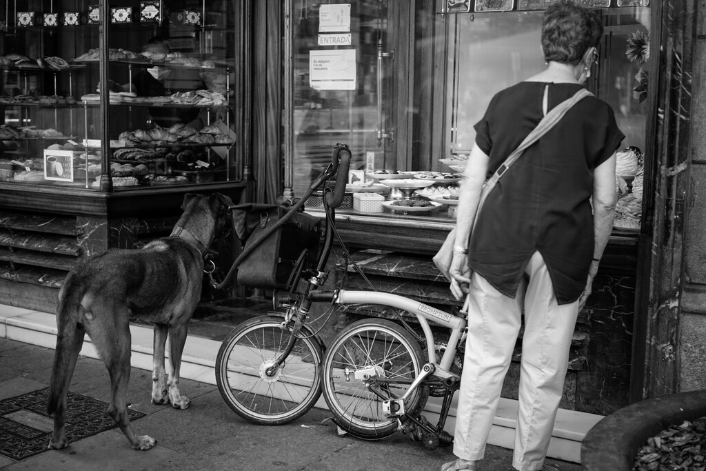A dog's life - Cake shop by jborrases