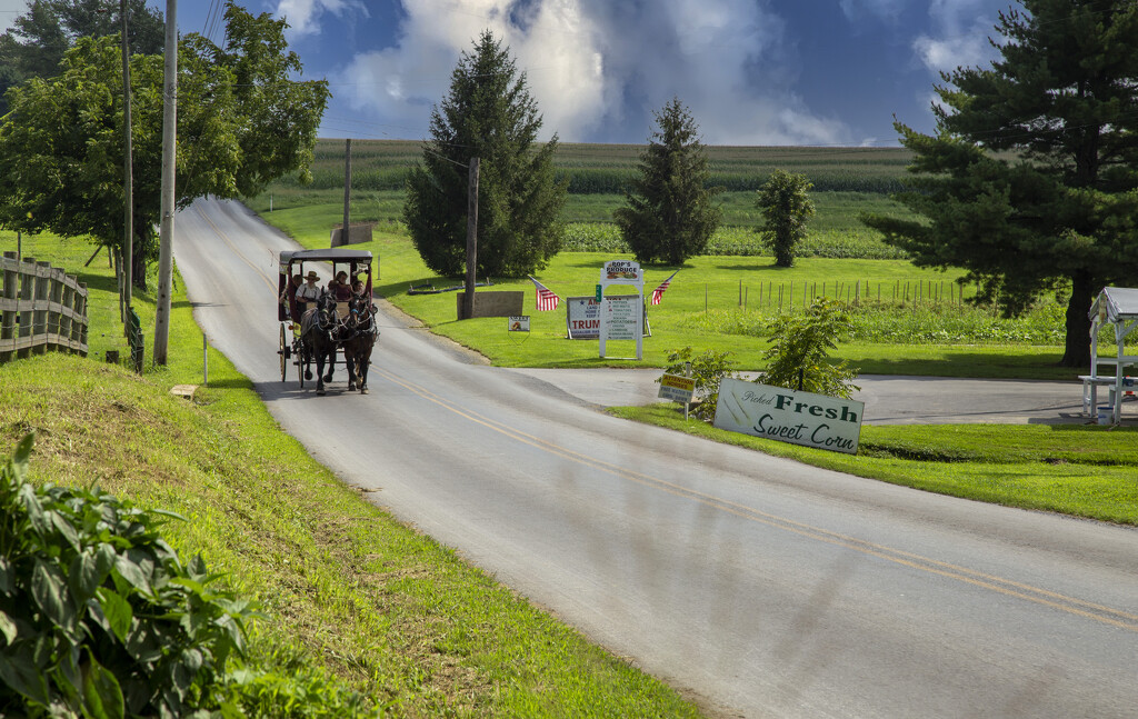 Amish Country by pdulis