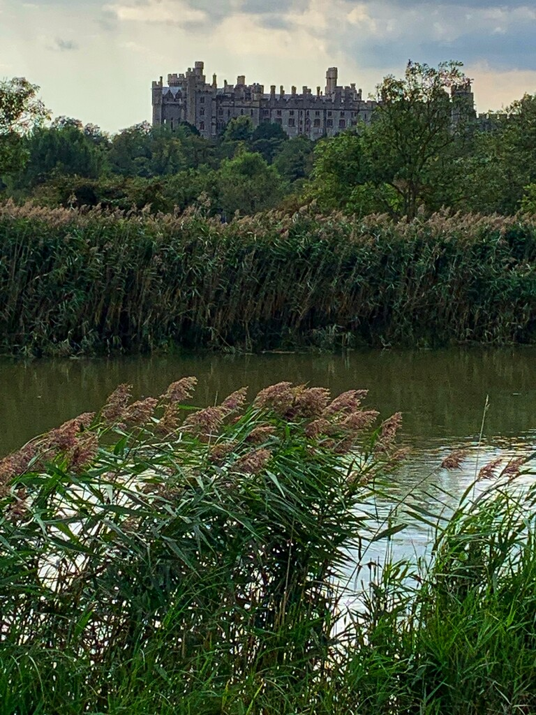 Arundel Castle by joyates